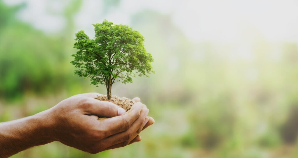 Read more on Nine Benefits of Corporate Sustainability