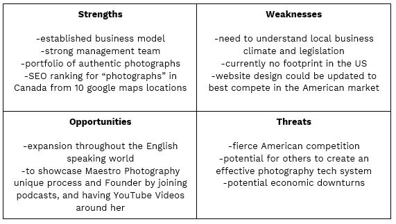 Photography Business SWOT