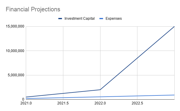 Psychedelic Business Financial Projections